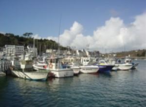 Les ligneurs au ponton pêche