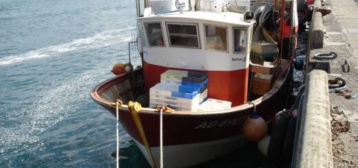 Diver Buez, bateau de pêche du port d'Audierne